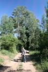 Camí de la Serra de les Garses