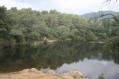 llac petit