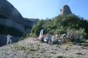 grup rotary esmorzant roques de la coca 2