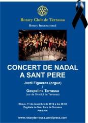 poster concert Nadal 2014 crespo