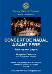 poster concert Nadal 2014