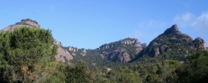 panoramica roca salvatge