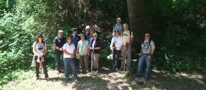 Grup Rotary a l'alzina de la font de la cirera 2