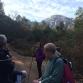 caminant pel bosc vell 4