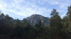 panoramica la mola 1