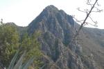 detall-de-lafrau-rotary-terrassa